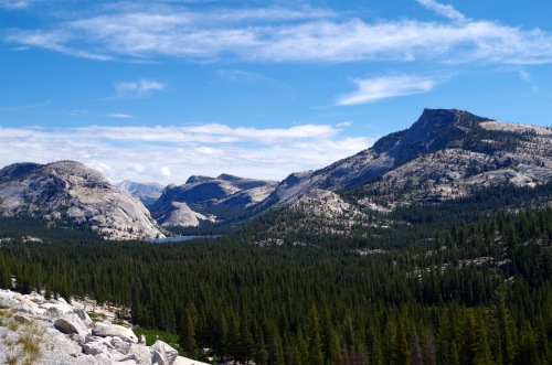 View from viewpoint along road within Yosemite