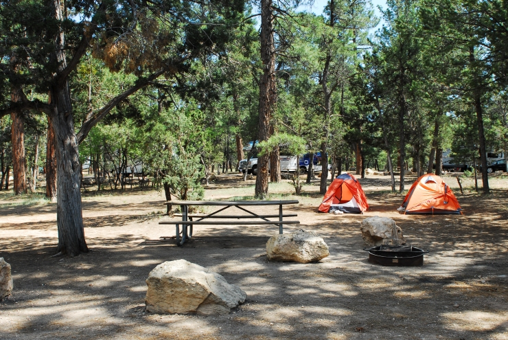 Grand Canyon National Park Mather Campground SR