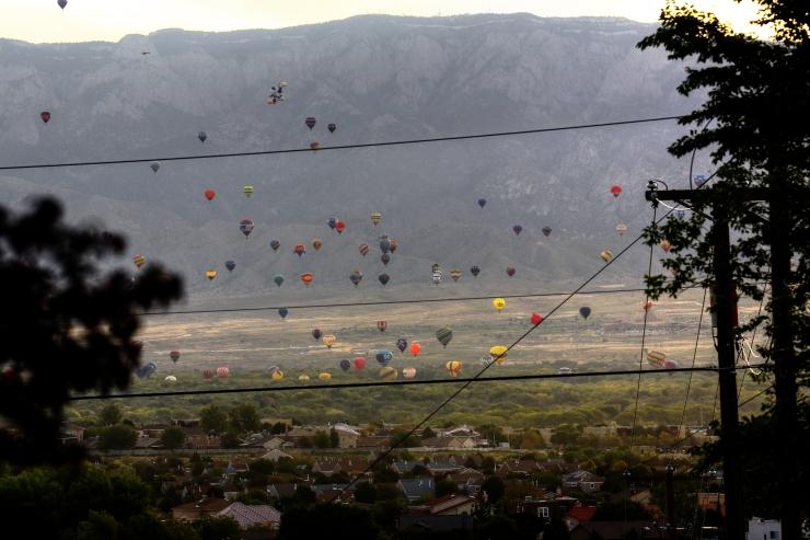 balloon_sandia_2_gardener41