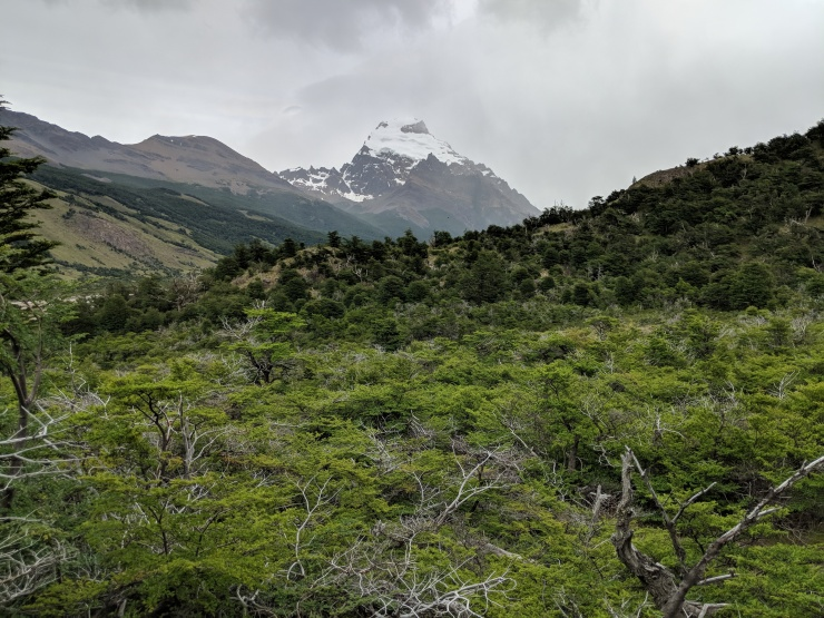 The view of Cerro Solo, the mountain just to the South of Laguna Torre