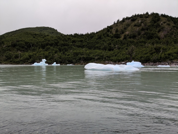 We then walked over to the shore of Lago Dickson to look at the scenery. These are icebergs that have broken off the Dickson Glacier and have floated all the way across Lago Dickson.