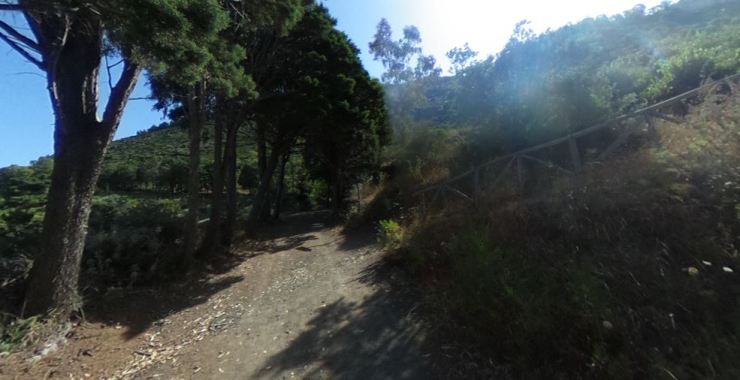 Trail_4