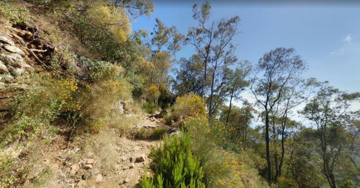 Trail_5