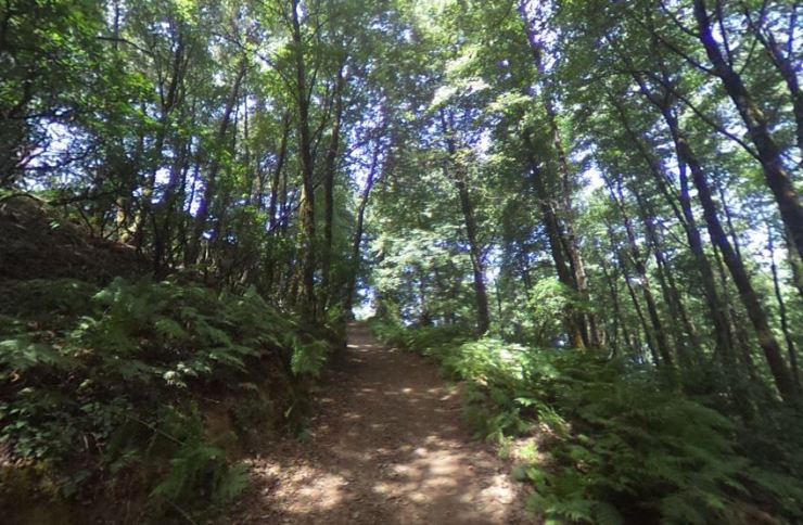 Trail_7