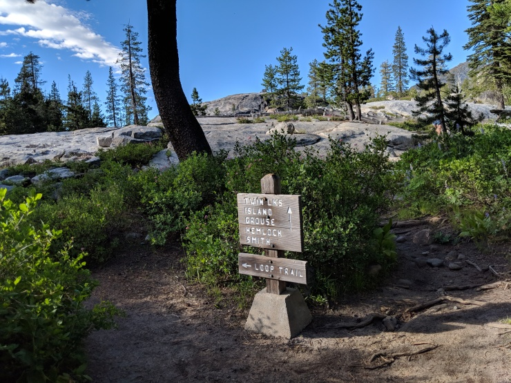 Desolation-wilderness-twin-lakes-junction-forest-to-granite