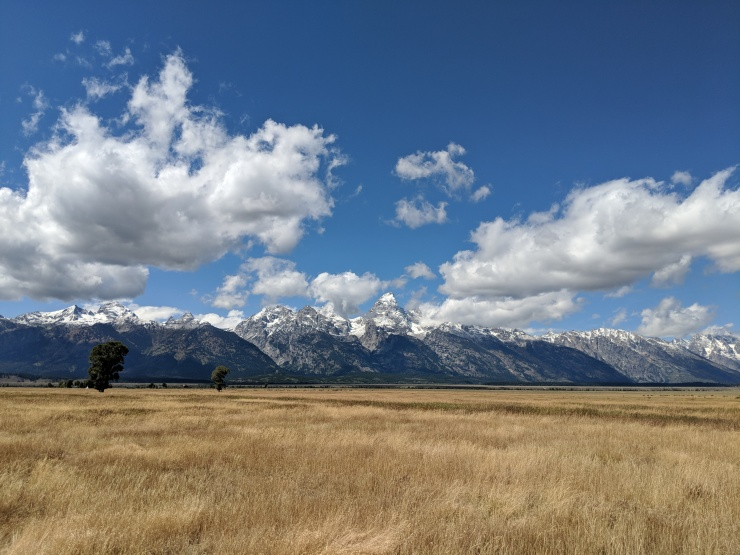 Grand-teton-national-park-mormon-row-view-3