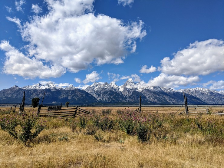 Grand-teton-national-park-mormon-row-view