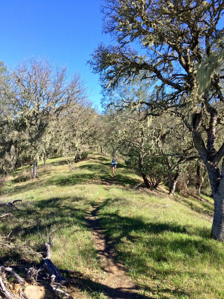 Henry-coe-backpacking-mississippi-climbing-willow-ridge