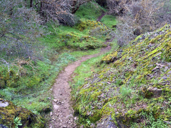 Henry-coe-backpacking-mississippi-hiking-the-narrows-side-trail