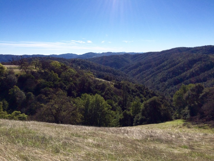 Henry-coe-backpacking-mississippi-lake-corral-trail-view