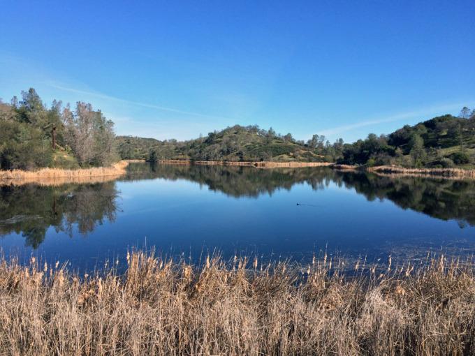 Henry-coe-backpacking-mississippi-lake-shore-morning