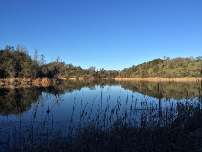 Henry-coe-backpacking-mississippi-lake-shore