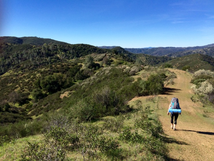 Henry-coe-backpacking-mississippi-willow-ridge-road-out