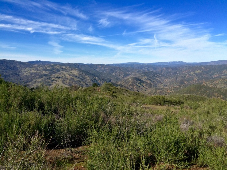 henry-coe-backpacking-mississippi-willow-ridge-road-view
