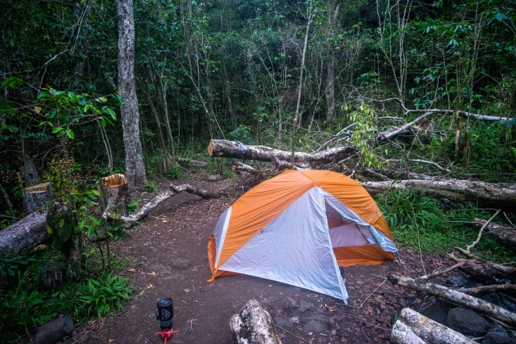 Kalalau-trail-backpacking-campsite-jungle