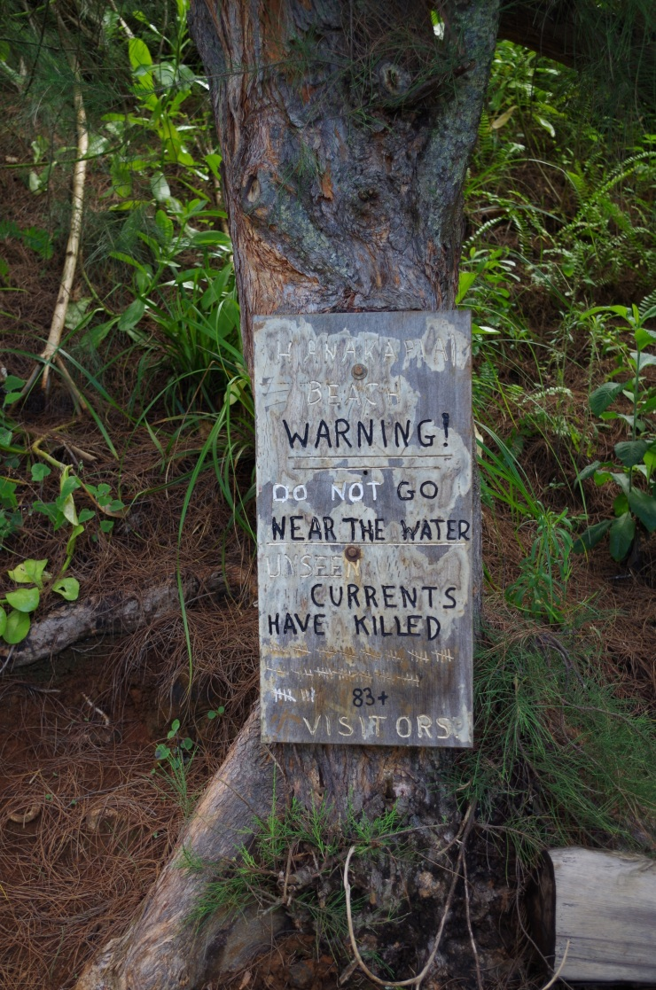 Kalalau-trail-backpacking-sign-at-hanakapiai-beach