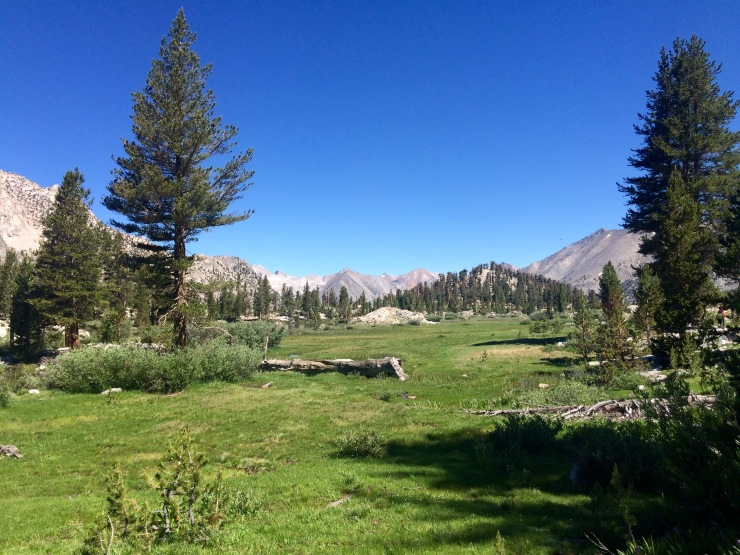 kings-canyon-rae-lakes-loop-meadow-before-arrowhead-lake
