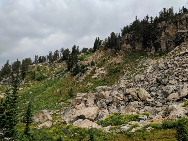 Teton-crest-trail-backpacking-alaska-basin-switchback-climb