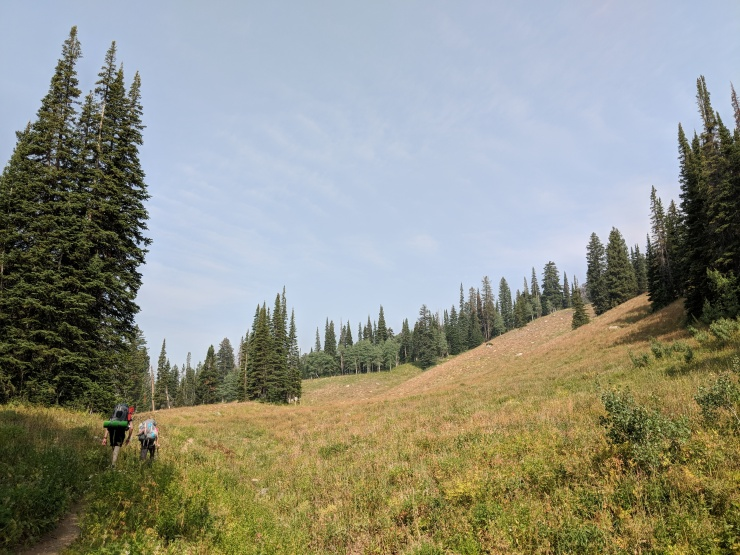 Teton-crest-trail-backpacking-granite-canyon-trail-meadow