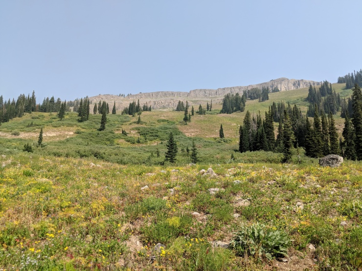 Teton-crest-trail-backpacking-rock-shelf-meadow