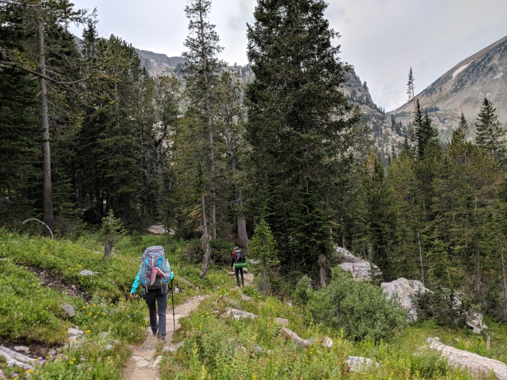 Teton-crest-trail-backpacking-south-fork-camp-zone-forest