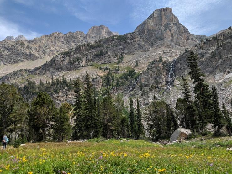 Teton-crest-trail-backpacking-teton-range-wildflowers-waterfall