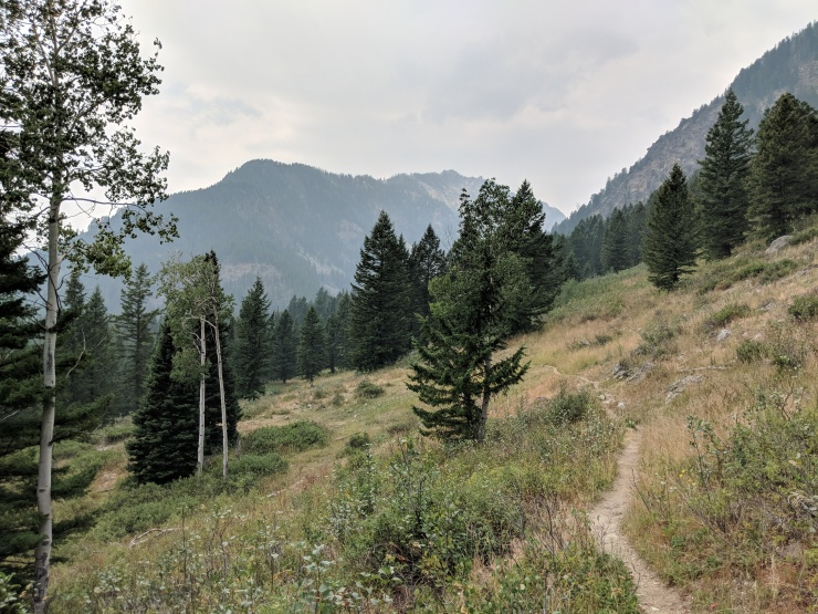 Teton-crest-trail-backpacking-valley-trail-towards-granite-canyon