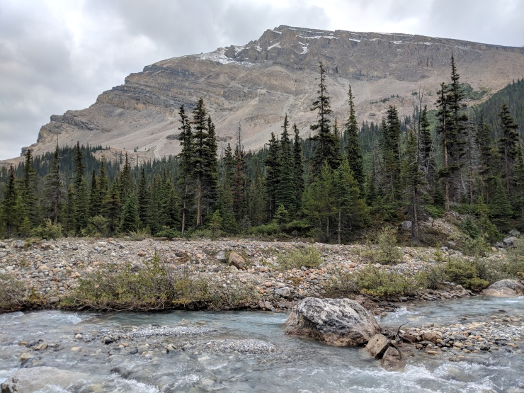 banff-bow-glacier-falls-hike-stream