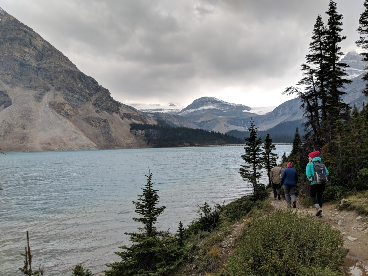 banff-bow-glacier-falls-trail-along-lake-shore