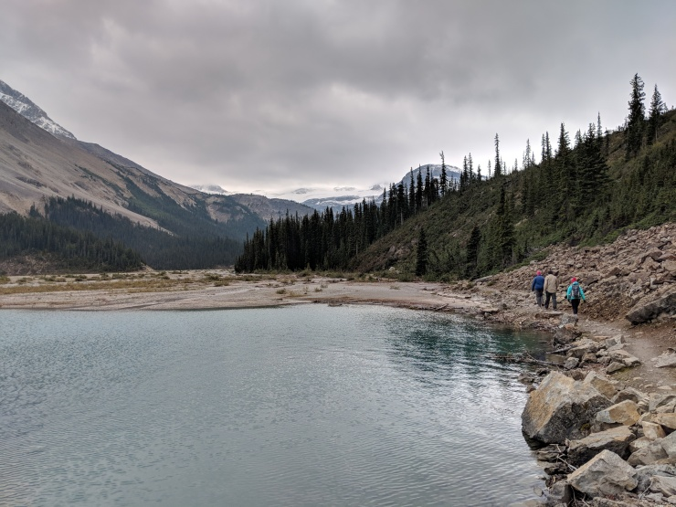 banff-bow-lake-trail-along-shore