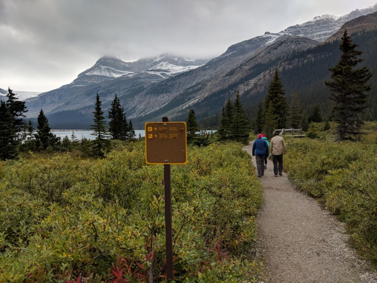bow-glacier-falls-trail-sign
