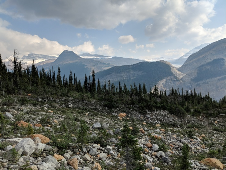daly-glacier-and-icefield-from-iceline-trail