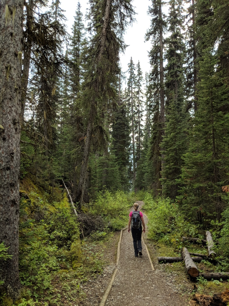 hiking-yoho-valley-trail