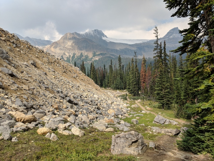 iceline-trail-along-scree-pile-to-little-yoho-valley