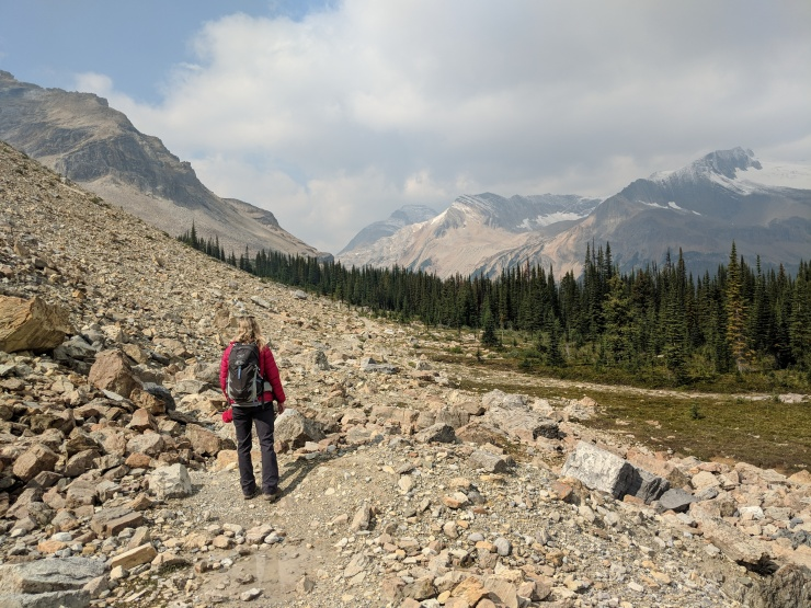 iceline-trail-approaching-descent-to-little-yoho-valley