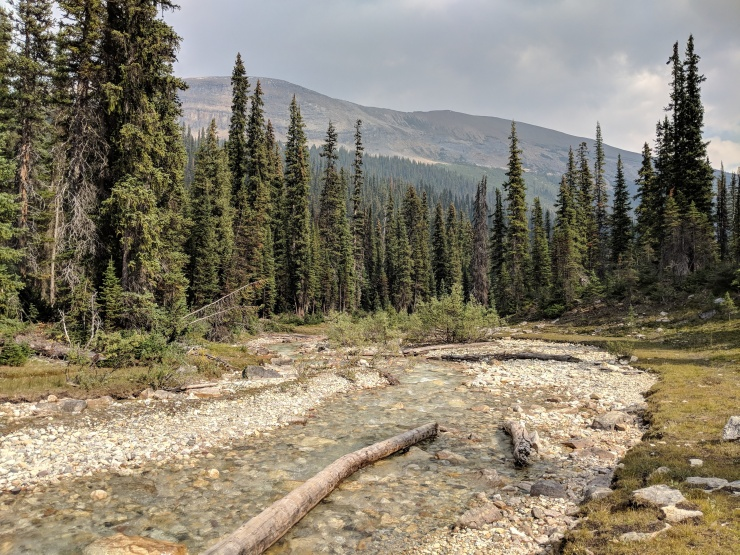 iceline-trail-little-yoho-river-looking-east