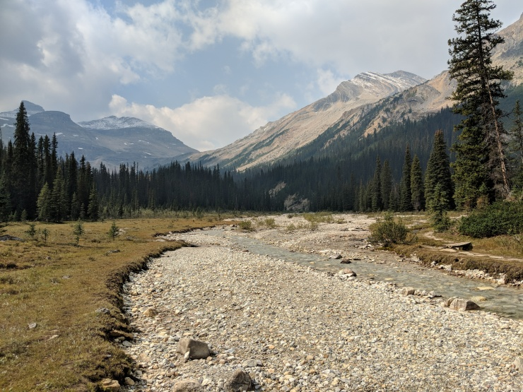 iceline-trail-little-yoho-river-looking-west