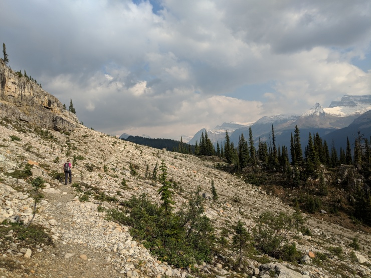 iceline-trail-with-mount-balfour-in-background