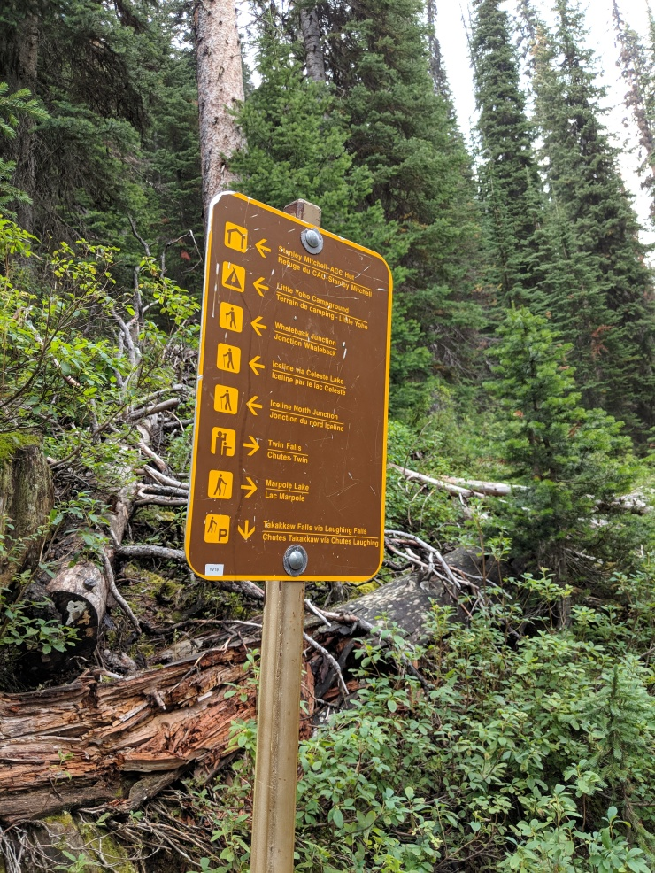 little-yoho-valley-trail-whaleback-trail-junction