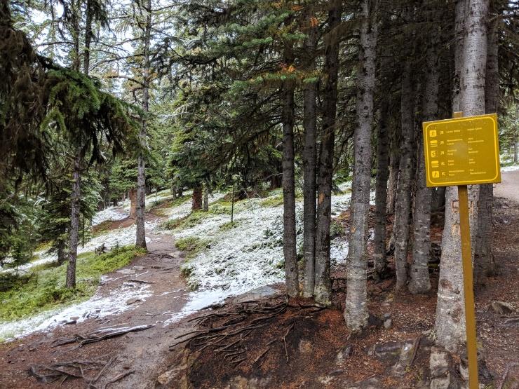 moraine-lake-junction-larch-valley-eiffel-lake-trail