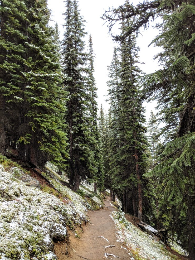 moraine-lake-start-larch-valley-trail-narrow-switchbacks