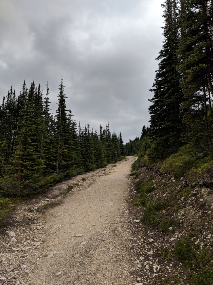 peyto-lake-bow-summit-lookout-fire-road