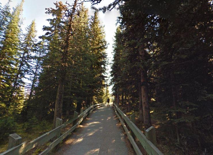 Peyto-lake-lookout-trail