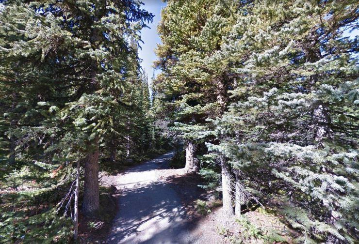 Peyto-lake-trail-at-start