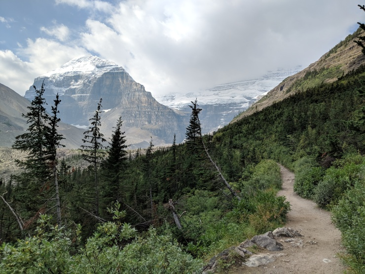 plain-of-six-glaciers-trail-climb-through-trees