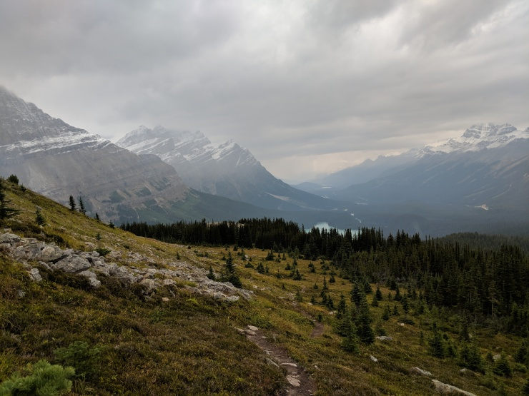 side-trail-and-glimpse-of-peyto-lake