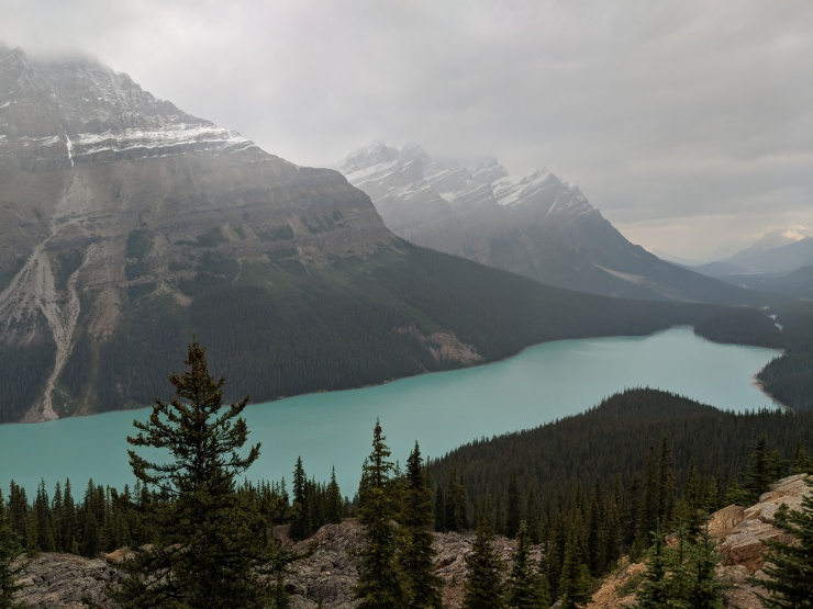 view-of-peyto-lake-from-the-first-lookout