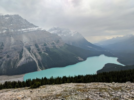 View of Peyto Lake from the upper viewpoint. At this area we saw no other hikers or tourists.