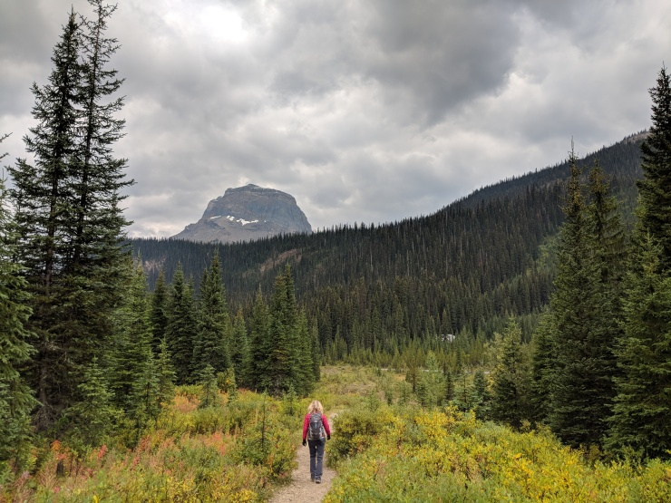 Yoho-iceline-trail-yoho-river-trail-towards-hostel