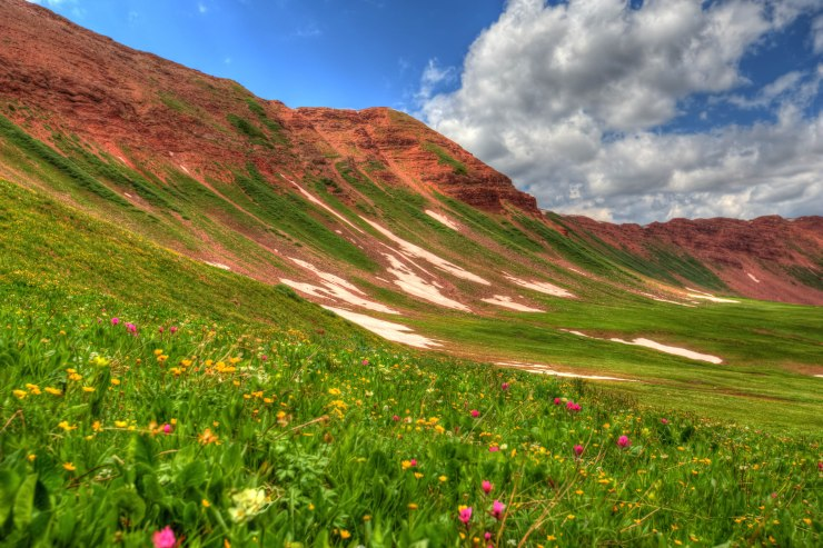 high_country_meadow_2